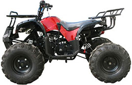 Large ATV-Youth ATV & Adult ATV