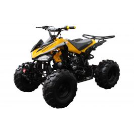 Coolster C-2 125cc ATV