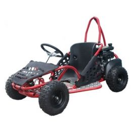 TAOTAO GK80 Youth GO KART (Automatic Clutch, Disc Brake, Chain Drive)