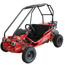 PRO Trail Master 163cc Kids XRS Mini Plus Go Kart ( Fully Automatic, 168F 5.5 HP General Purpose Engine, Speed Limiter)