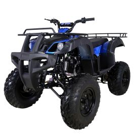 TaoTao Bull 150 Youth/Adult ATV