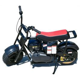 Trail Master Mini Bike MB200-2