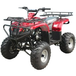 PRO TT XL Youth Size Grizzly Clone 125cc ATV (Big 21/20 inch wheel, extra large body frame, Semi-Automatic w/ Reverse, Speed Limiter, Safety Remote Engine Shut Off Switch)