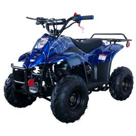 Vitacci Hawk 110cc ATV with Automatic Transmission, Electric Start, Rear Rack!