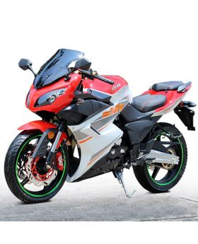 PRO RTS Sports Bike (5spd Manual Transmission, Front Twin Disc Brake with Rear Disc, F/R 17inch Wheels)