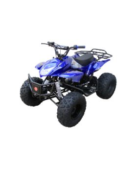 ATVs,Quads, Adult ATV, Youth ATV, Kids ATV, 4 Wheelers, 4x4 ATV, UTV