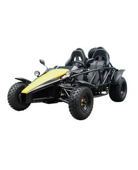TaoTao Arrow 200 Go Kart