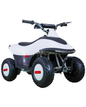 TAOTAO Rover-350 Electric Kids ATV