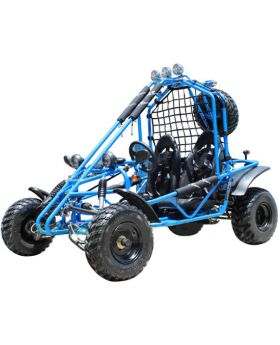 PRO DF Series 200cc GoKart ( Fully Automatic with Reverse,Honda CRF Series Clone 4 Stroke Engine, Adjustable Racing seat with 4 Points Harness Belt, Spider Style with Extra Leg Room, Optional Spare Tire)