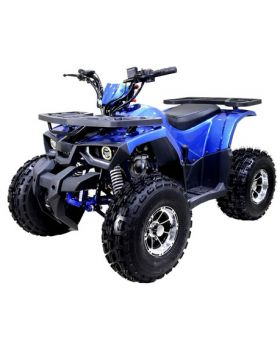TT Raptor 120 ATV Blue