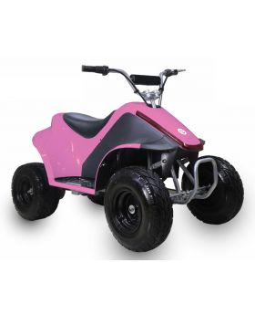 TAOTAO Rover-500 Electric Kids ATV