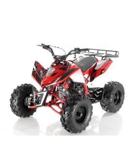 Cheap 125cc ATV , Kids 125cc ATV, Youth 125cc ATV for Sale