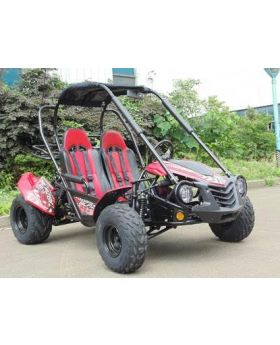 PRO Trail Master 150cc Large Size (Fits Adult and Big Youth) Blazer Go Kart ( Fully Automatic, Hi-Power 4-Stroke GY6 150cc Engine, Electric Start, Adjustable Seat, Heavy Duty F/R Shock, 4-Point Harness Belt, Large Gas Tank Horn, Trailer Hitch)